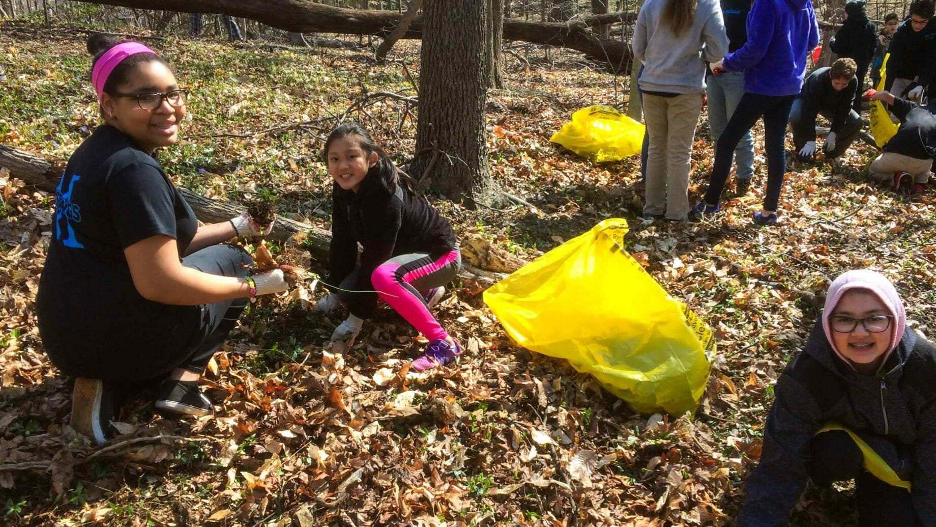 Students Cleaning Up Leaves Outdoors